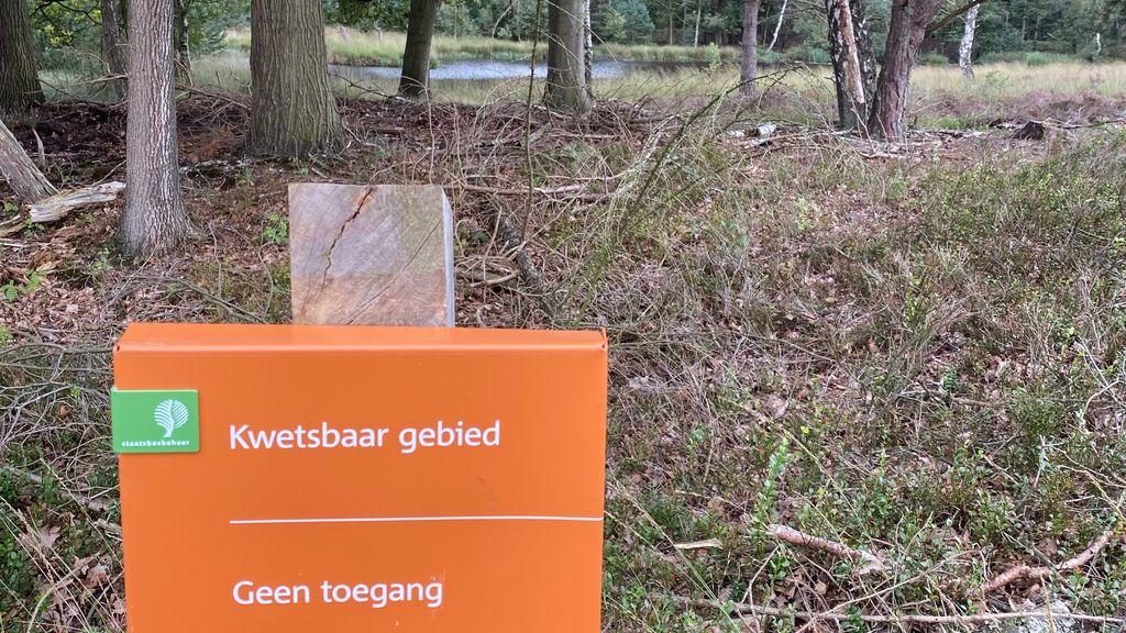 """CDA Nunspeet: """"Natuurbeheerders moeten rekening houden met wensen van inwoners"""""""