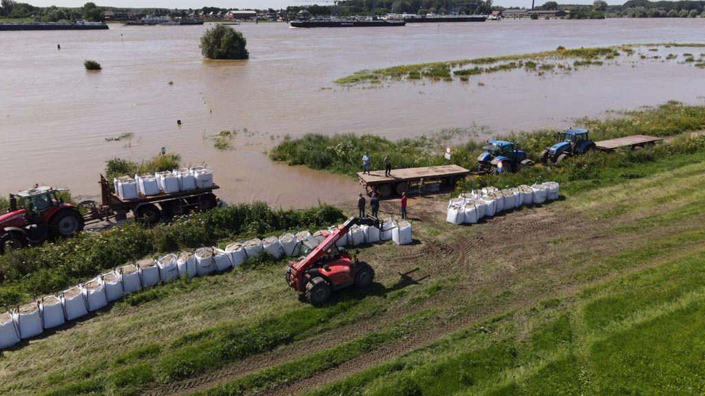 Boeren plaatsen planken en zandzakken in de uiterwaarden om oogst te redden