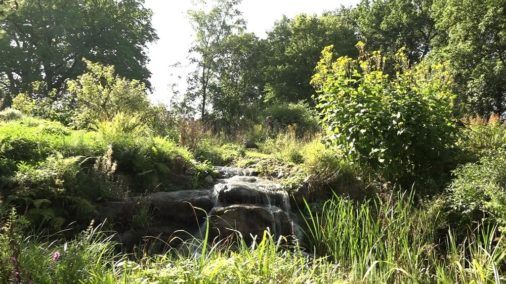 Stichting Hortus Nijmegen- Gelderland helpt  Foto: Omroep Gelderlan d