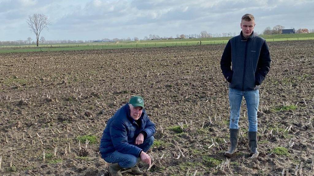 Eerste kievitsei in Heerde gevonden