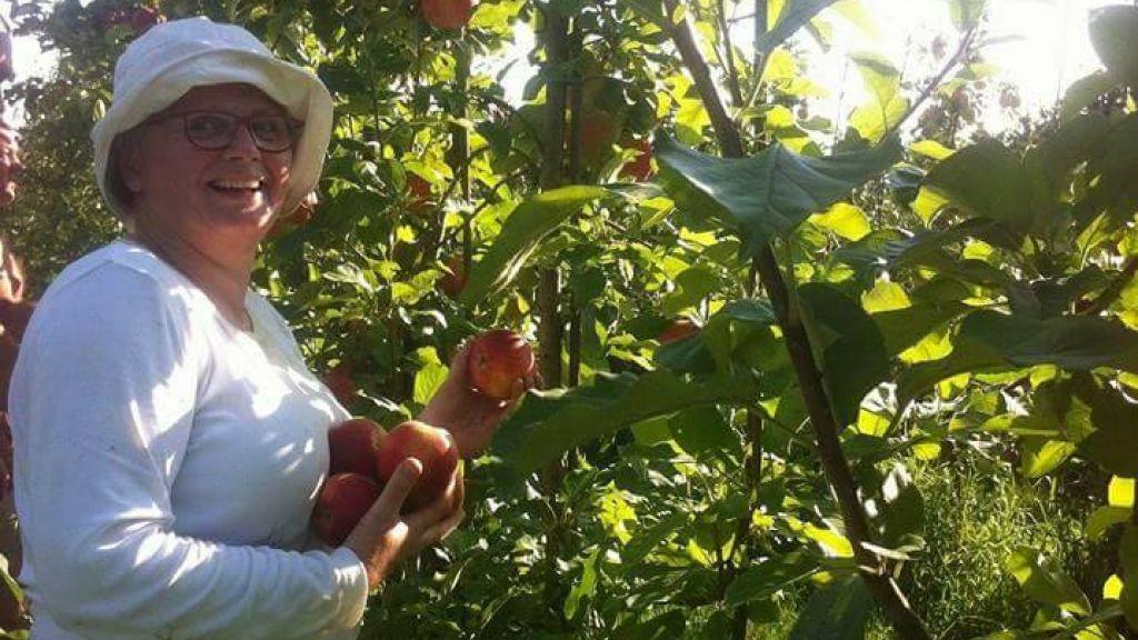 Fruit plukken voor Sidney and Friends