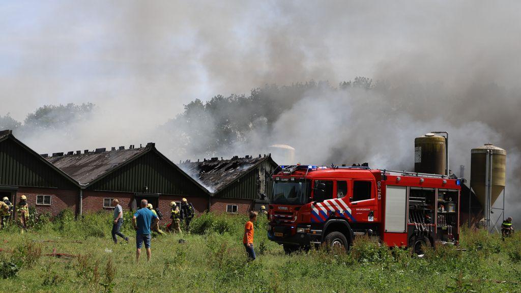 Stalbrand waarbij 220 kalveren omkwamen mogelijk begonnen in meterkast