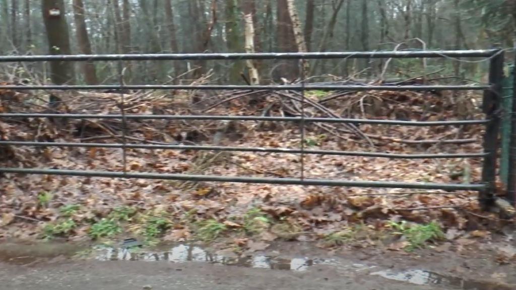 Commotie over het Luntersch buurtbosch