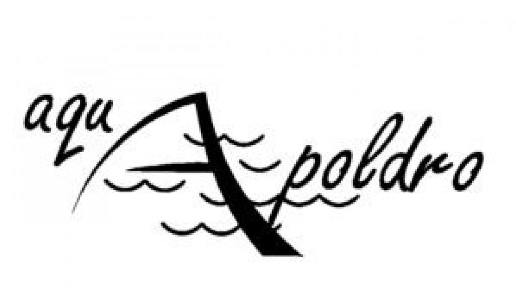 Aquapoldro start eeuwfeest met online borrel