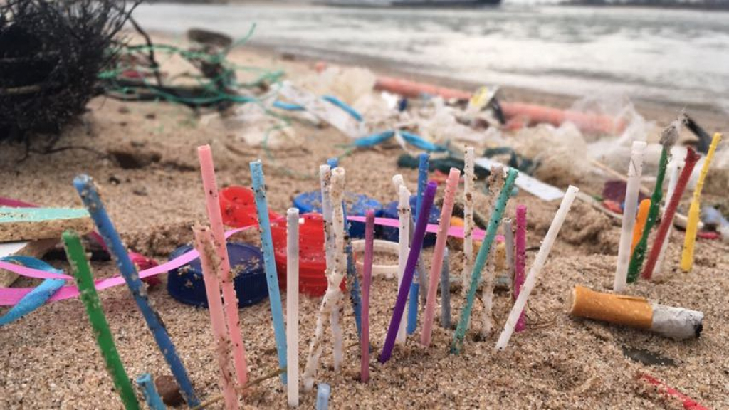 Oevers Waal bezaaid met bergen plastic en ander afval