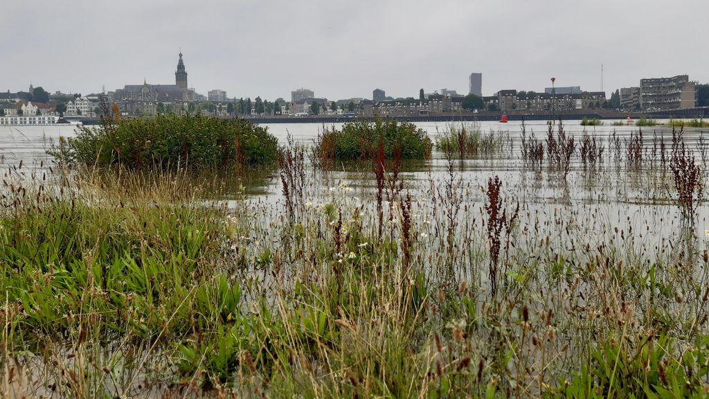 Historisch hoog waterpeil in de Waal