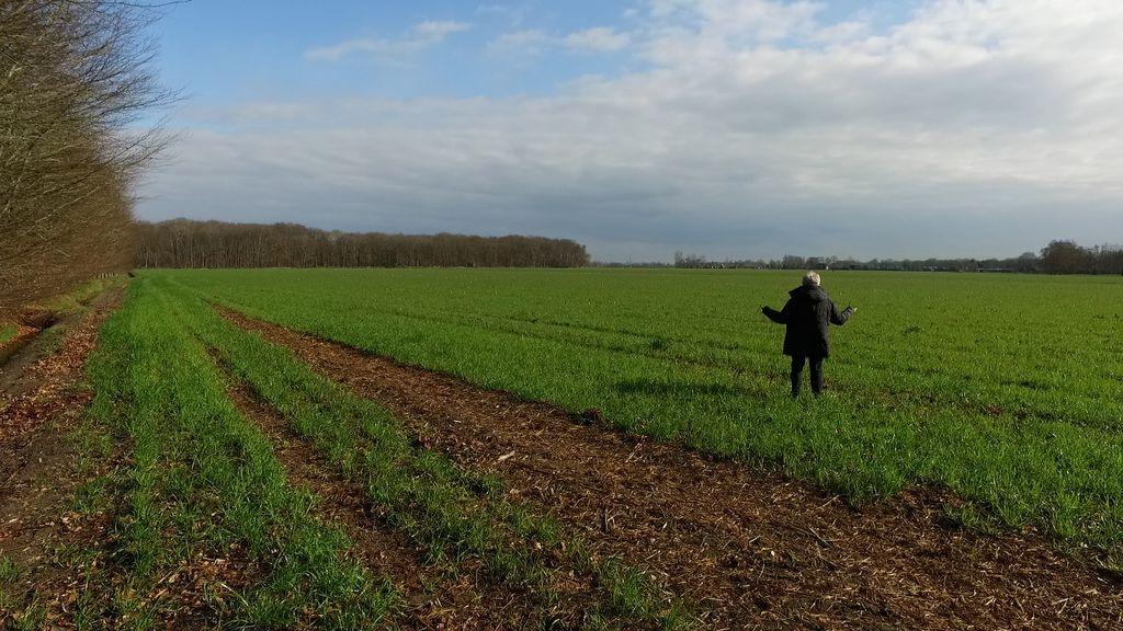 Gijsje zoekt net als vele anderen overal naar het kalf Foto: RTV Nunspeet