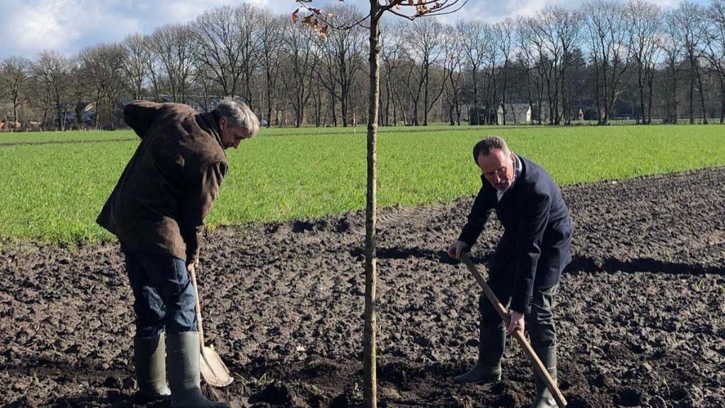 Bomen geplant voor betere leefomgeving das