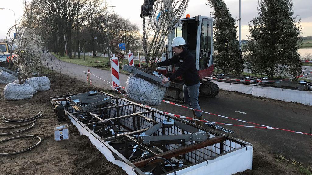 'Hangende bomen' geplaatst langs het fietspad van de toekomst bij Rhenen