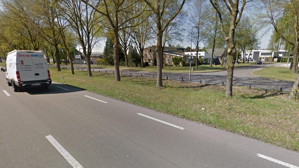 Er komt meer en wildere begroeiing in Wijchense bermen. Foto: Google