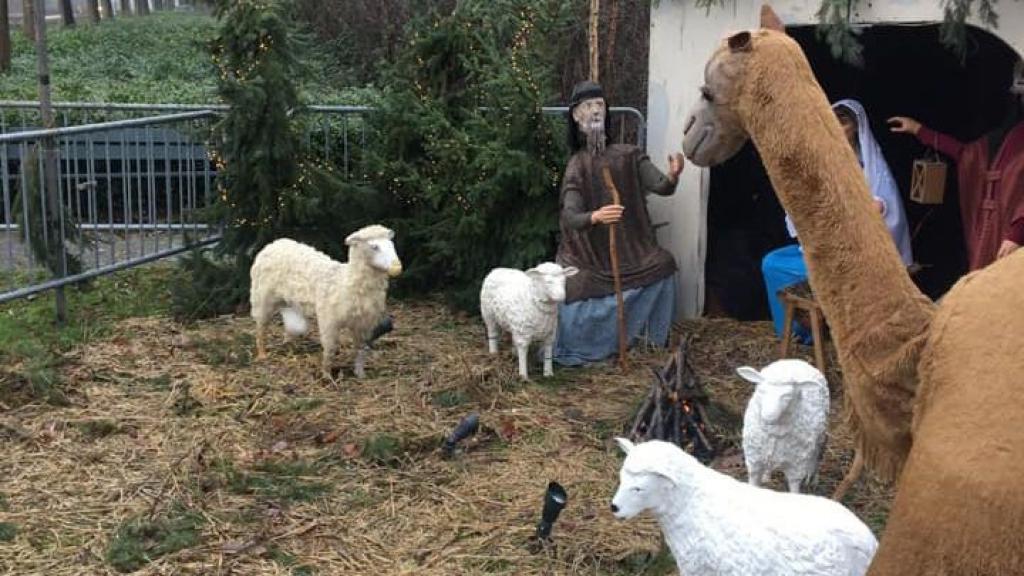 De kerststal in Berg en Dal Foto: Berg en Dals Bloei