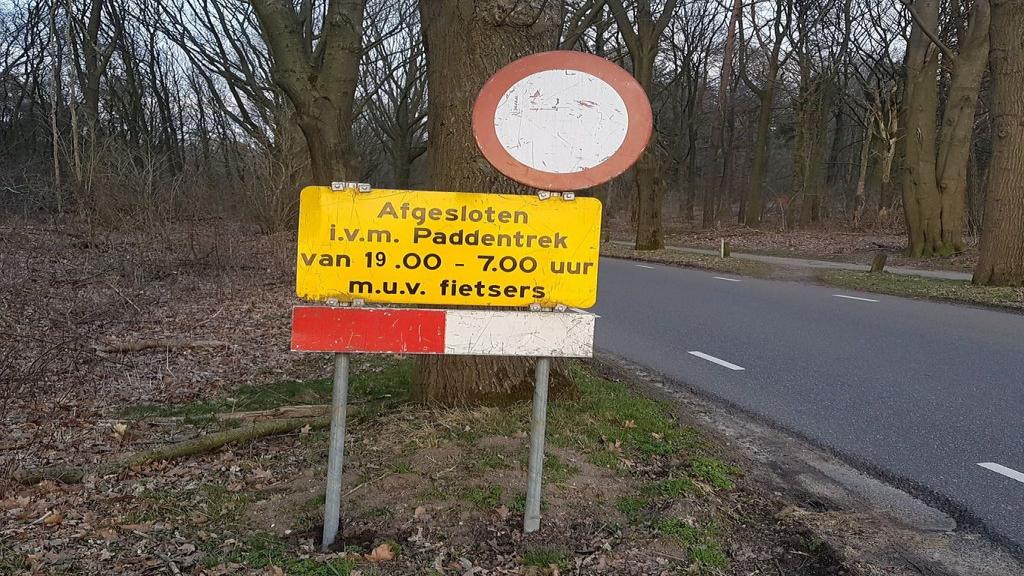 Wegen in Rhenen afgesloten vanwege paddentrek