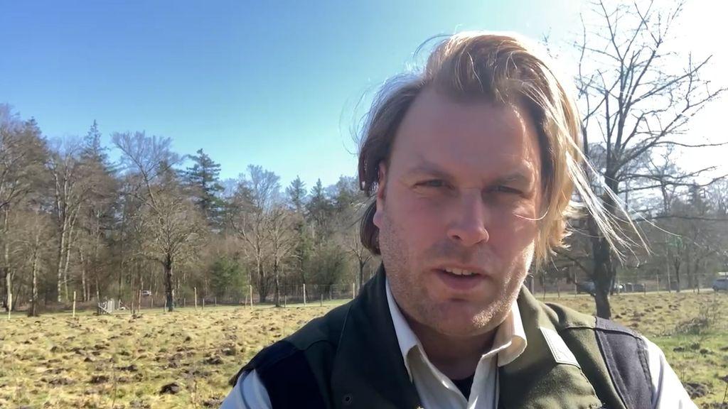 Boswachter Lennard Jasper bij Nieuw Soerel Foto: RTV Nunspeet