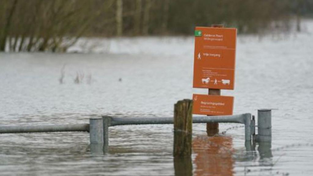 Staatsbosbeheer sluit uiterwaarden tijdelijk af in verband met hoogwater