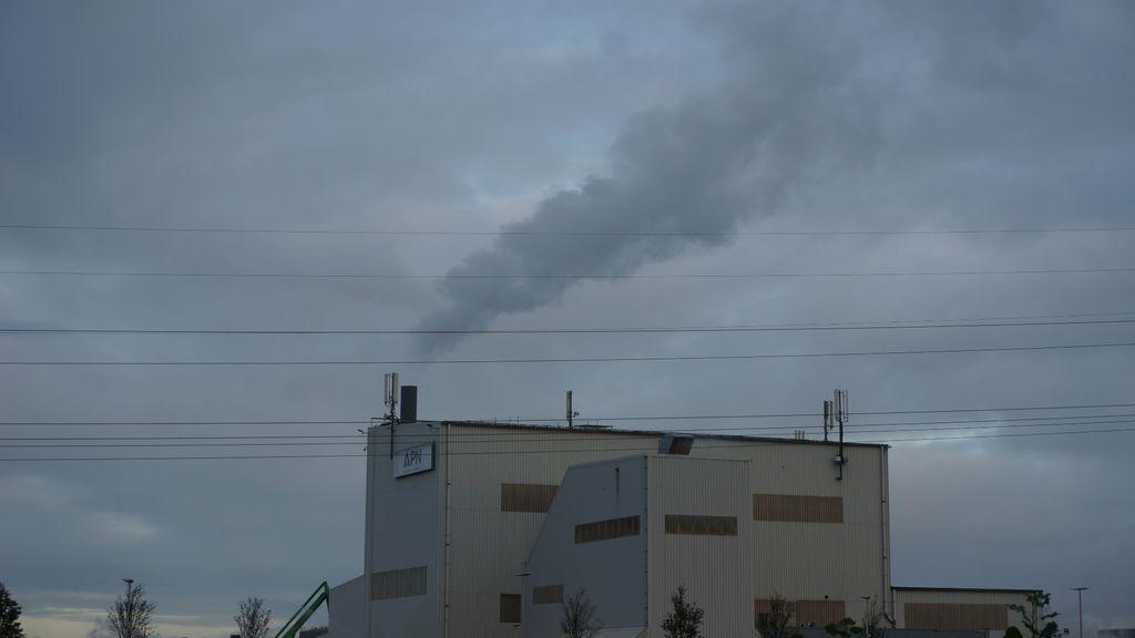 Rook uit de schoorsteen van asfaltcentrale APN woensdagochtend. Foto: Roel van Tiel
