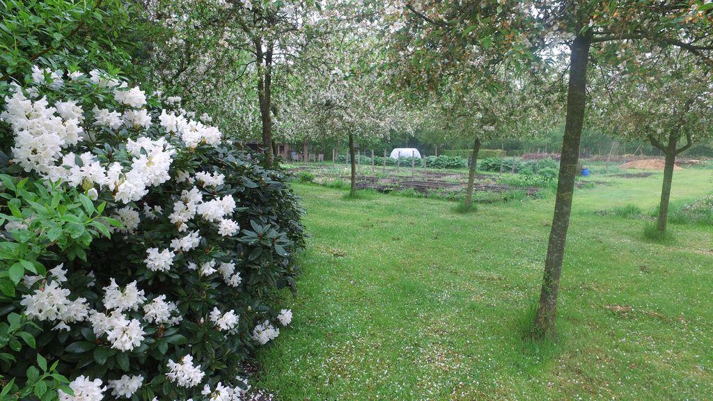Dorpstuin Nunspeet een mooie plek