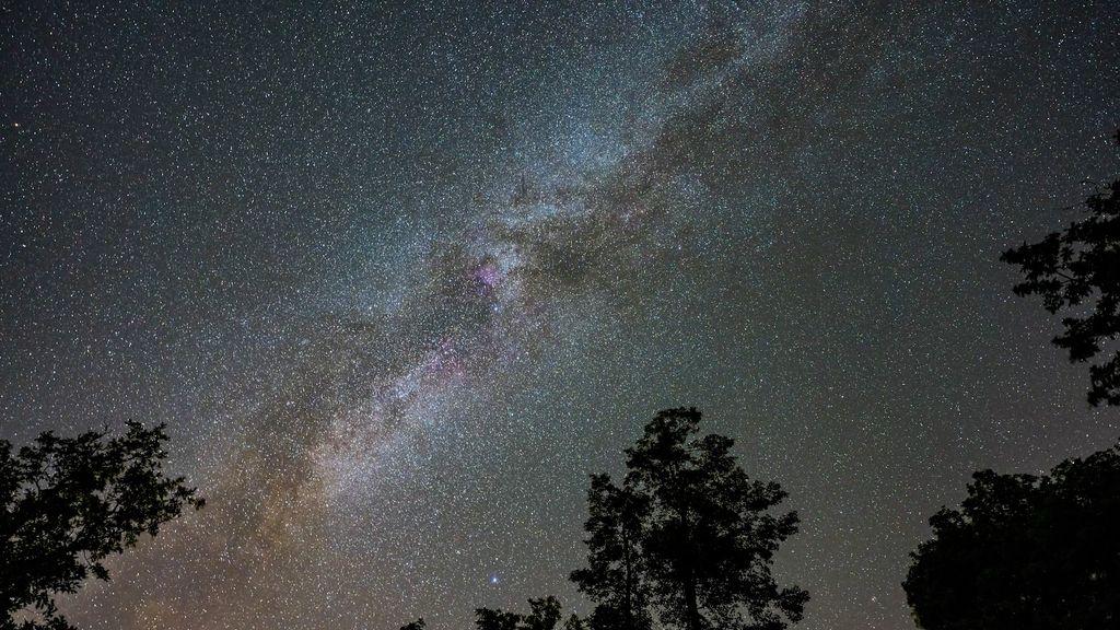 """Dit jaar """"perfecte omstandigheden"""" om veel vallende sterren te zien"""