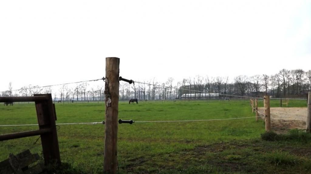 Komt hier in Harskamp een zonneveld? Foto: XON