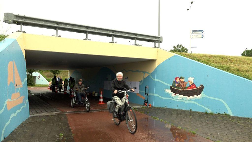 De beschilderde berenkuil in Tiel.  Foto: Omroep Gelderland