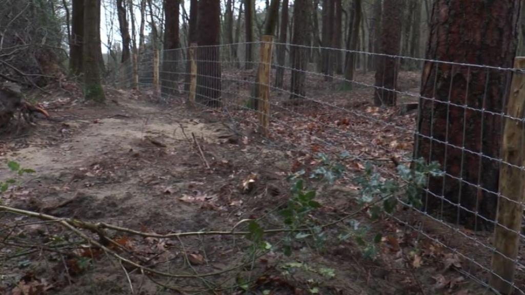 Raadsleden stellen vragen over afsluiting wandelpaden in het Luntersch Buurtbosch