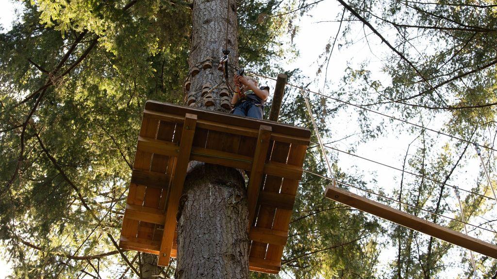 Vergunning voor klimbos een stap dichterbij