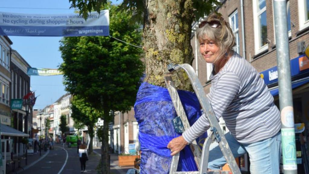 De blauwe bomen van Birgit Pedersen in de Wageningse binnenstad