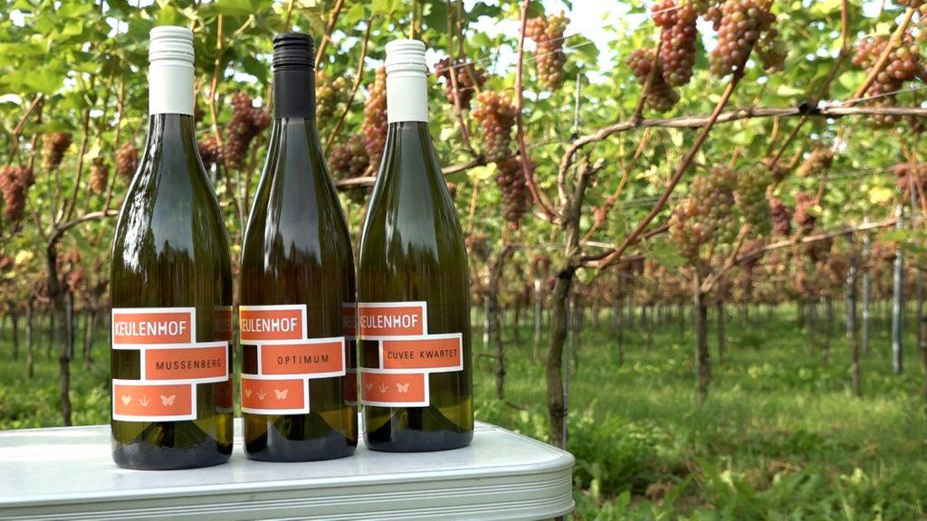 De winnende wijnen. Foto: Omroep Gelderland