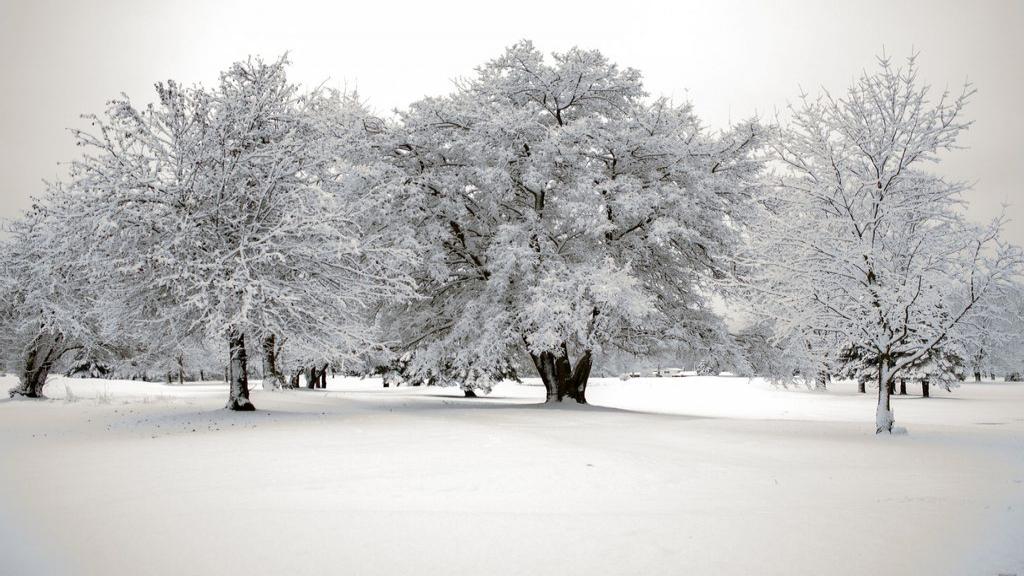 Sneeuwellende óf -pret? Stuur ons een foto of video!