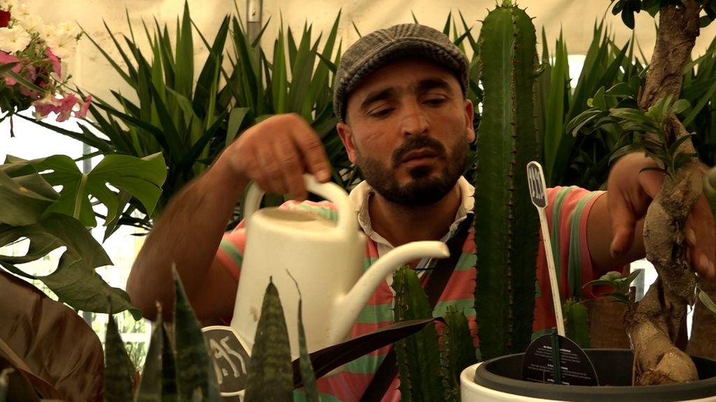 Mohammed heeft eigen tuincentrum opgebouwd, maar wordt steeds bestolen