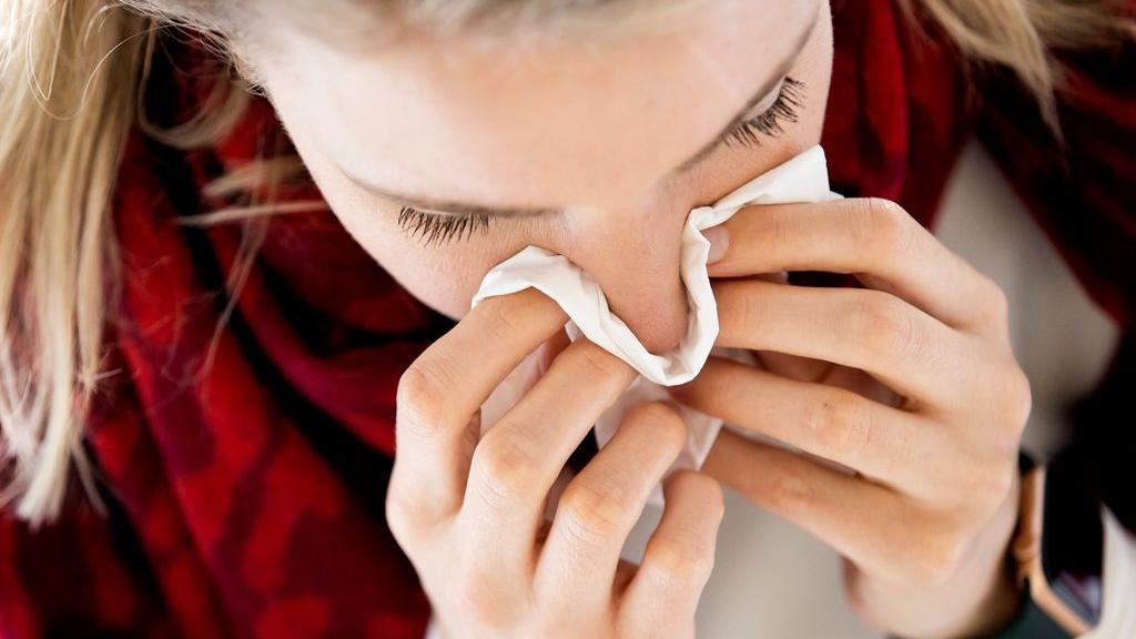 Hooikoortspatiënten hebben deze dagen standaard zakdoeken bij zich. Foto: ANP