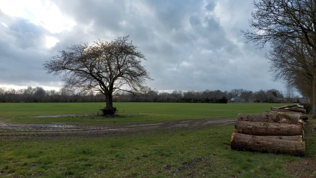 Gemeente Nunspeet werkt hard aan de woningbouwplannen voor de Kijktuinen